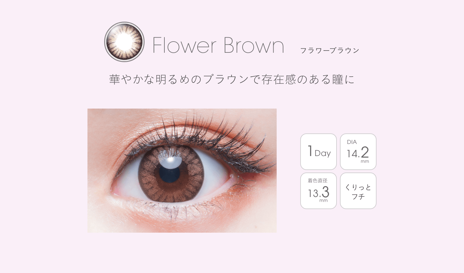 Flower Brown