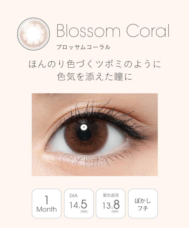 Blossom Coral