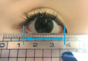 目の横幅の測り方