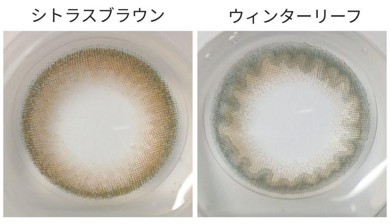 実物のレンズの比較画像