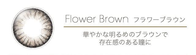 ドリーミー フラワーブラウン